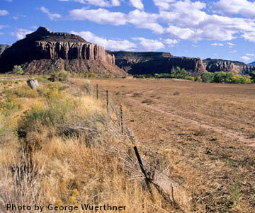 00000-02446 Fenceline showing overgrazed pasture at TNC's Dugout Ranch Utah George Wuerthner-