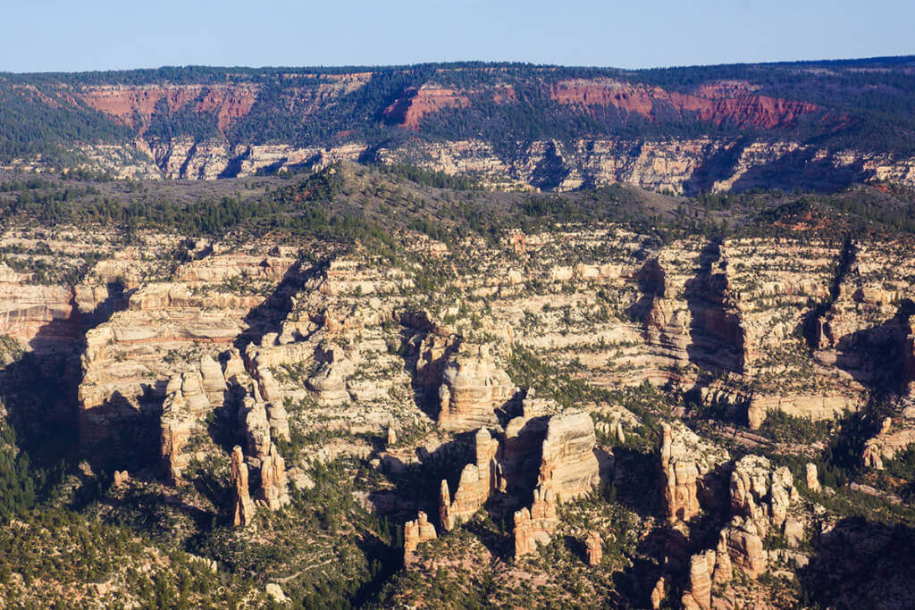 tower-canyon-1-of-1-ecoflight