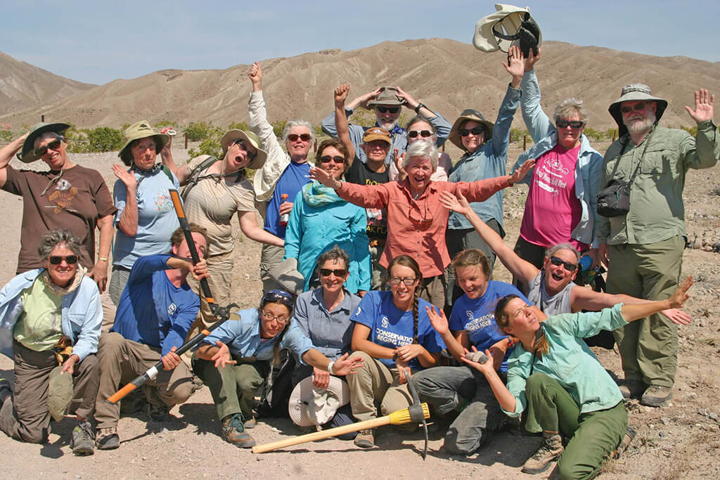 Image of Broads with work field tools in the Mojave desert