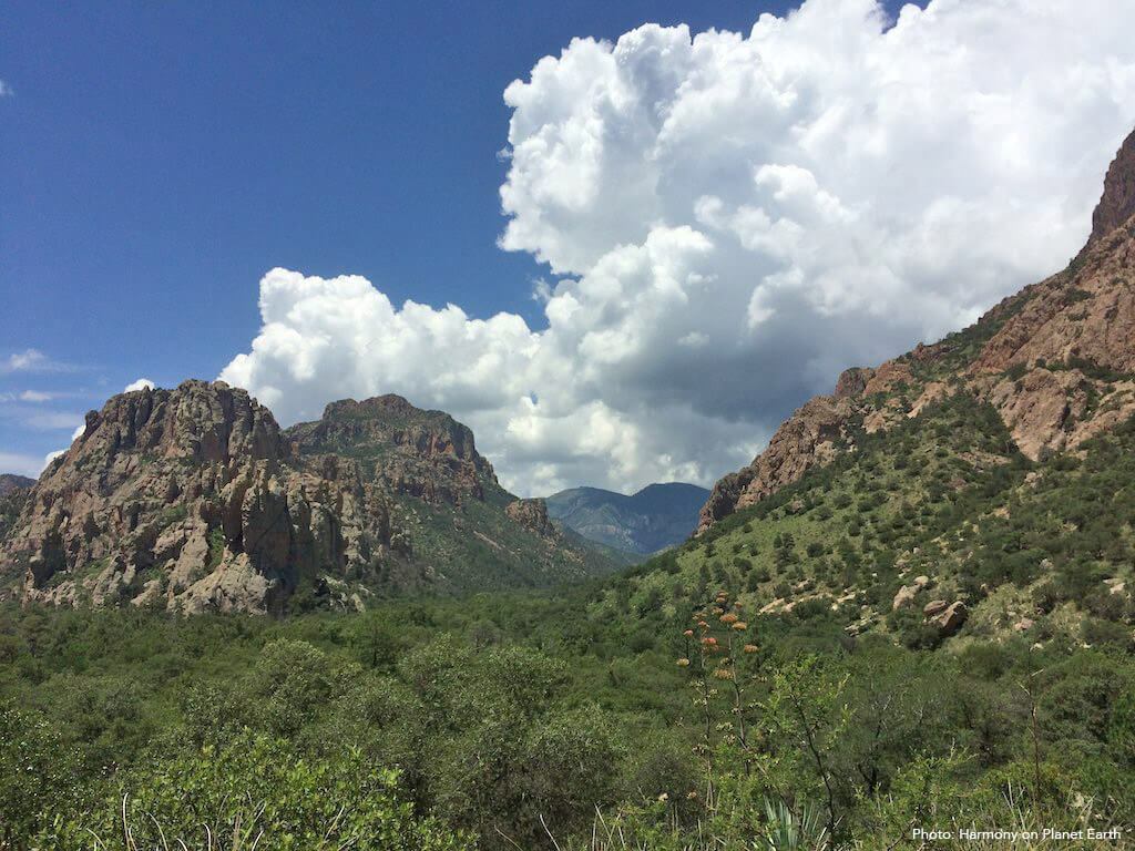 A scenic picture of the Chiricahua Mountains in Arizona