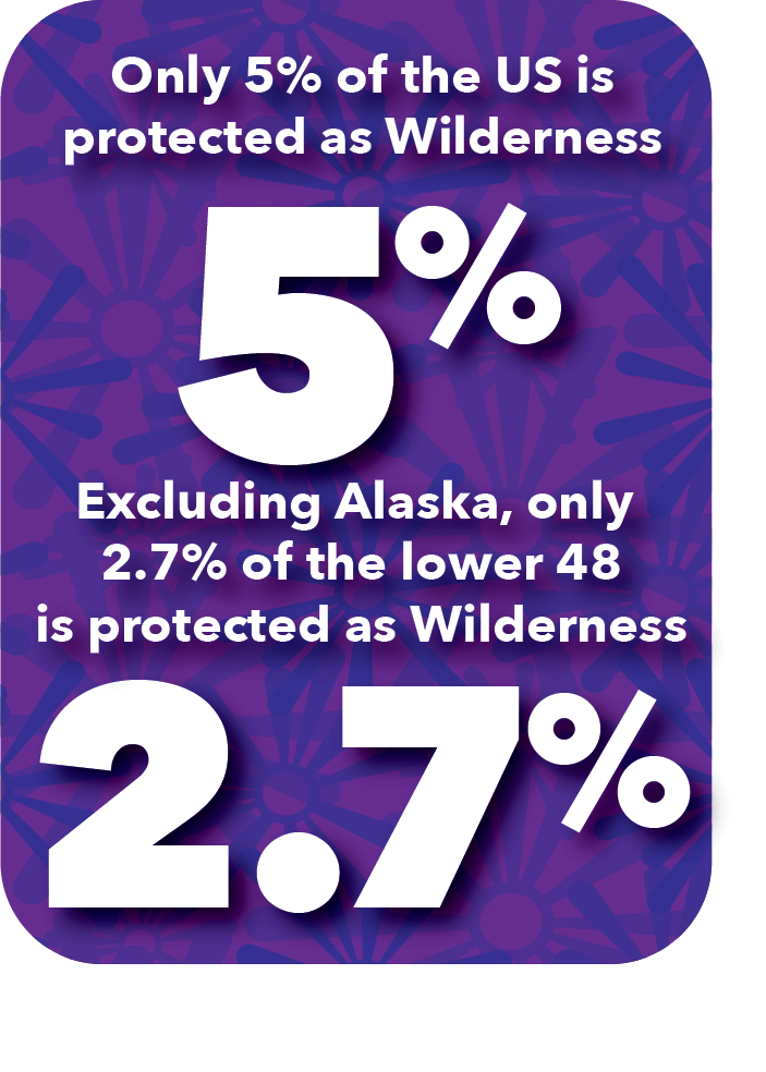 Currently, only 5% of the US is protected as Wilderness—and excluding the vast wilderness areas in Alaska, only 2.7% of the lower 48 is protected as Wilderness.
